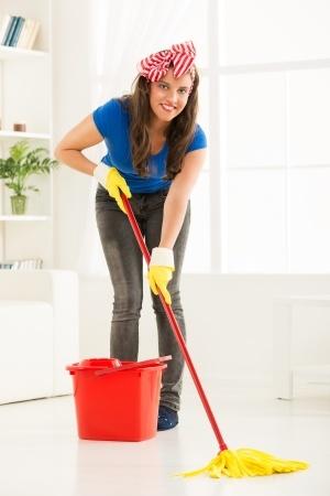 residential maid service glen ellyn illinois