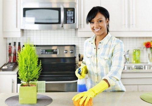 Reasons to Hire Professional Home Cleaning Maids in Wheaton