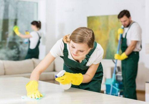 House Cleaning Service in Wheaton that Fits Your Home Needs